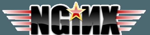 nginx server logo