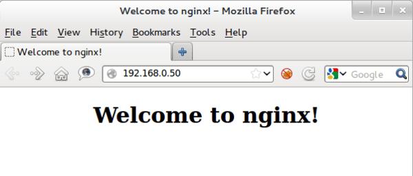 nginx server web
